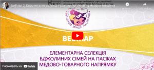 Вебінар 3. Елементарна селекція бджолиних сімей на медово-товарних пасіках